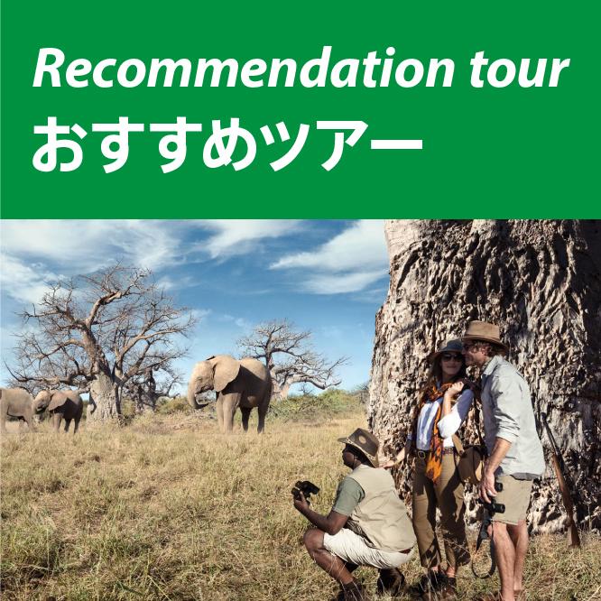 Recommendation tour オススメツアー