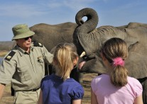 野生動物保護も学べるラグジュアリーなサファリロッジ<br>キャンプ・ジャブラニ