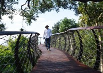 カーステンボッシュ国立植物園の新名物 キャノピー・ウォークウェイ