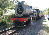 出発進行!南アフリカで体験できる蒸気機関車の旅