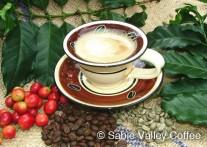 コーヒー好きにおすすめのサビー・バレーのコーヒーツアー