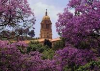 ジャカランダが美しい南アフリカの首都 行政と歴史の街プレトリア