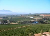 西鉄旅行主催、南アフリカワイン専門家三宅司氏とケープタウンでワインを楽しむ南アフリカワイン紀行発売中