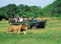 南アフリカ観光局2012年1月の渡航者数を発表