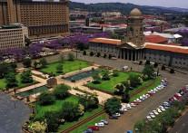 南アフリカに花々の季節が到来!