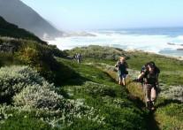 これからがベストシーズン!南アフリカで体験する最高のトレッキング