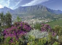 南アフリカ観光局 2016年11月の旅行者数を発表