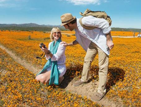 息をのむ絶景・デイシーの花畑が圧巻「ナマクワ国立公園」